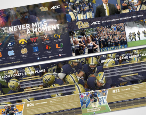 University of Pittsburgh Panthers*